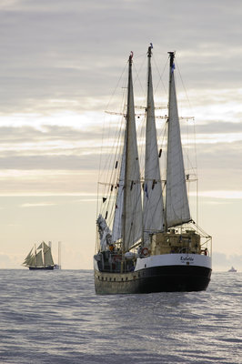 Finnish 3-masted schooner 'Estelle' underway at sunset, during Bergen to Den Helder Tall Ships Race, 2008 by Richard Sibley - print