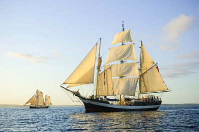 'Pelican of London' off Falmouth, during the start of the Funchal 500 Tall Ships regatta 2008 by Richard Sibley - print
