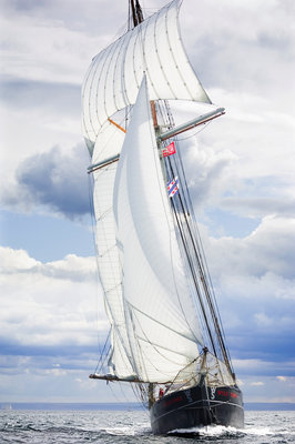 Built as a herring hunter, 'Wylde Swan' competing in the North Sea Tall Ships Regatta 2010 by Richard Sibley - print