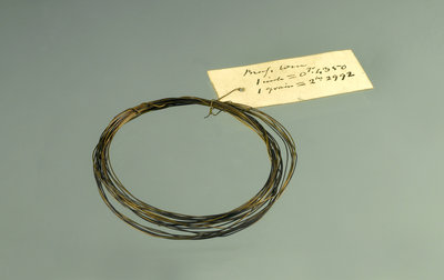 Roll of brass wire in a bag by unknown - print