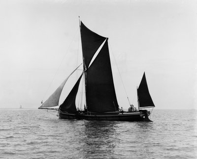 Sailing barge 'Veronica' (Br, 1906) under sail by unknown - print