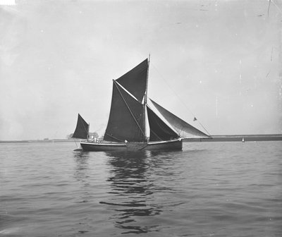 Sailing barge 'Sara' (Br, 1902) under sail by unknown - print