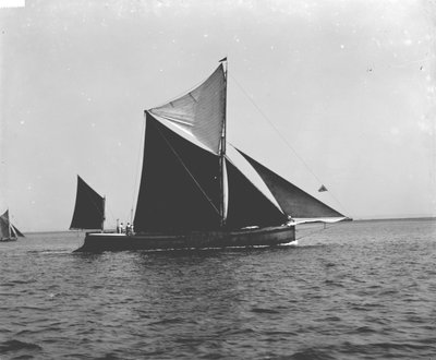 Sailing barque 'Imperial' (Br, 1902) under sail by unknown - print