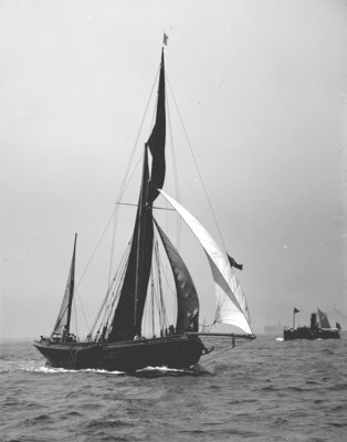 'Satanita' (Br, 1897) under sail by unknown - print