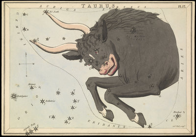 Taurus, Urania's Mirror or a View of the Heavens by Sidney Hall - print