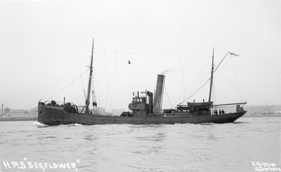 Trawler HMS 'Seaflower' (1908), 1912 by unknown - print