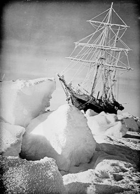 'Endurance' frozen in and forced out of the ice, during Ernest Shackleton's Imperial Trans-Antarctic Expedition of 1914-1917 by unknown - print
