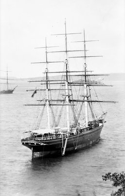 'Cutty Sark' (1869) waiting in Sydney Harbour for the new season's wool by unknown - print