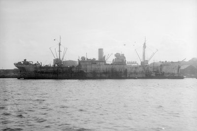 'Empire Magpie' (Br, 1919) lying in port by unknown - print