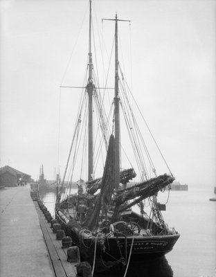 'Thomas B. Miller' (Br, 1906) moored at unidentified quayside by unknown - print
