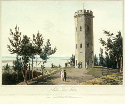 Nelson's Tower, Forres by William Daniell - print