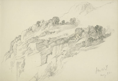 Study of mountainous wooded landscape (on reverse and inverted) by John Brett - print