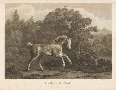 Horse at Play by George Stubbs - print