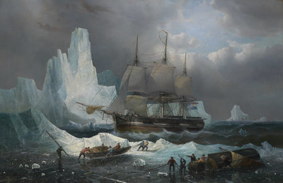 HMS 'Erebus' in the Ice, 1846 by Francois Etienne Musin - print