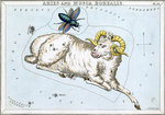 Constellation card, Urania's mirror, Aries and Musca borealis by Sidney Hall - print