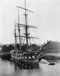 'Ferreira' (1869) at the Albion Dock at Surrey Commercial Docks, London by unknown - print