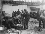 Folkestone, Kent. Sorting fish on the harbour slipway at low water by unknown - print