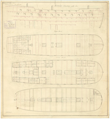 'Tortoise' (1807) by unknown - print