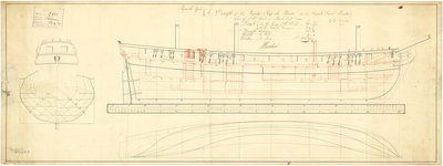 Lines and profile plan for Frederic (fl.1781) and Pelican (1781) by unknown - print
