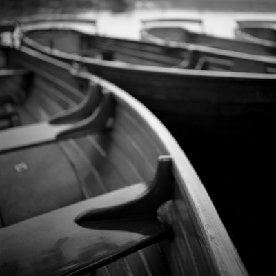 Rowing Boats, Dedham Vale, 2010 Fine Art Print by Paul Cooklin
