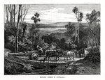 Hauling timber, Australia Fine Art Print by Anonymous