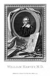 William Harvey, medical doctor Fine Art Print by Clive Uptton