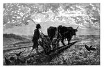 A French agriculturist Wall Art & Canvas Prints by Peter Jackson