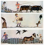 Ploughing, sowing, and harrowing, c1300-1340, (c1900-1920) Fine Art Print by Peter Jackson