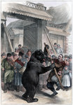 Performing bear in a Russian village Wall Art & Canvas Prints by French School