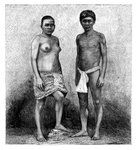 Young Talamancas Indians, Central America Fine Art Print by Paul Gauguin