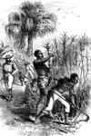 Slaves working on a plantation, USA Fine Art Print by William Aiken Walker