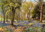 Wild Hyacinths in a Surrey Copse Fine Art Print by William Henry Hunt