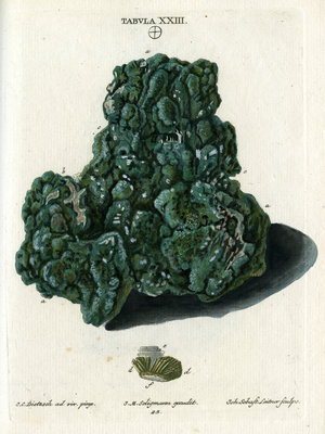 Crystalline Green Copper by Johann Sebastian Leitner - print