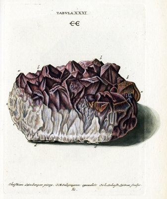 Quartz with Amethyst Crystals by Johann Sebastian Leitner - print