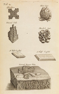 Stones and crystals in the Royal Society's Repository by Anonymous - print