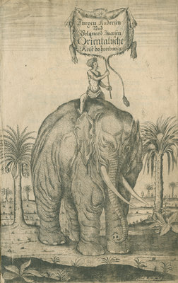 Indian elephant by Andreas Lorenzen Rothgiesser - print