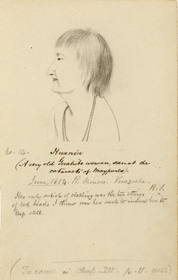 Portrait of Huanéau by Richard Spruce - print
