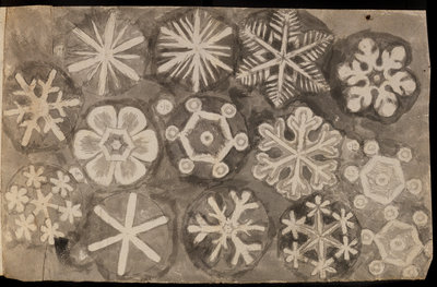 'Figures observ'd in snow' by Robert Hooke - print