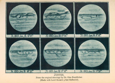 Phases of Jupiter by Anonymous - print