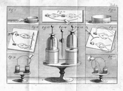 Aldini's experiments on Galvanism with frogs legs by Anonymous - print