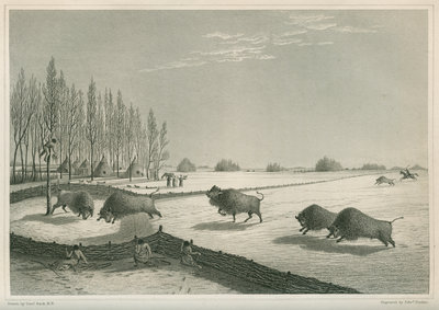 'A buffalo pound, Feb. 8 1820' by Edward Francis Finden - print