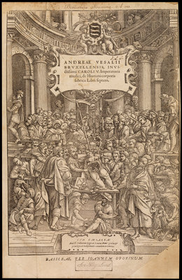 Title page of 'De humani corporis fabrica' by Studio of Titian - print