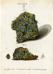 Green mineral of lead