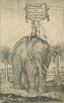 Indian elephant by Edward Francis Finden - print