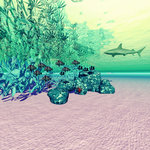 Coral reef life in the deep ocean. Wall Art & Canvas Prints by Charles Joseph Travies de Villiers