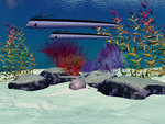 Exotic fish swim over a colorful reef. Wall Art & Canvas Prints by Felix Edouard Vallotton