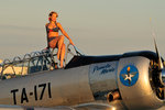 1940's style pin-up girl sitting on the cockpit of a World War II T-6 Texan. Postcards, Greetings Cards, Art Prints, Canvas, Framed Pictures, T-shirts & Wall Art by Cathy Lomax