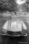 Mercedes Gullwing (small) by Philip Townsend - art